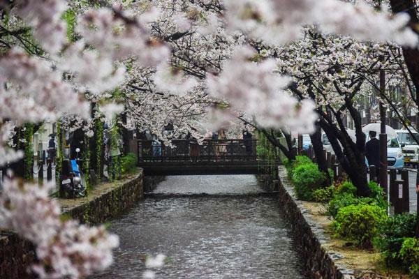夜キャバより稼げないけどメリットも多い!京都の朝キャバ&昼キャバで働く